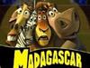 Lions Cachées de Madagascar