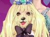 Cute Puppy Show