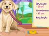 Confección de Ropa para Perros