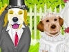 Puppy Dog Wedding