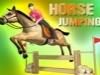 Horse Jumping Riding