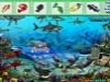 Underwater Fish Hidden Objects