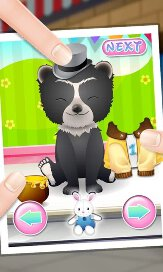 Pet Spa and Salon - 28