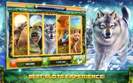 Cats and Dogs Casino Free Slots - 2