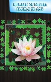 Jigty Jigsaw Puzzles - 5