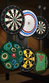 Pro Darts 2014 - 3