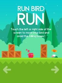 Run Bird Run - 2