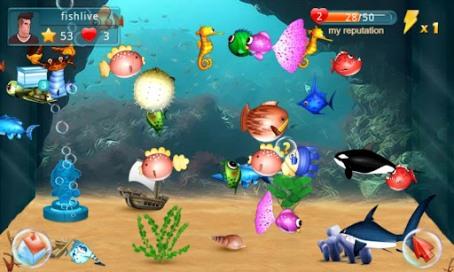 Fish Live - 1