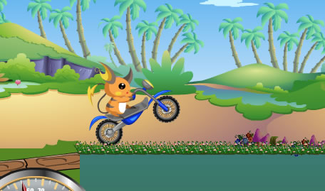 Pokémon Bike Adventure