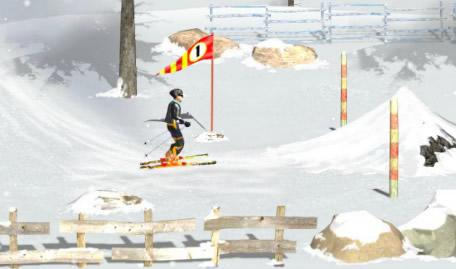 Esquiar na Neve PRO