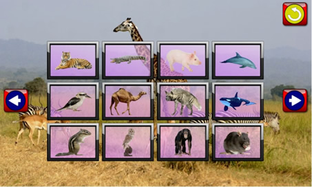 Children's Animal Jigsaw Puzzles - 4