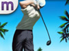 Pro Golf Paradise FREE
