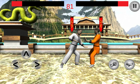 Kung Fu 3D - 3