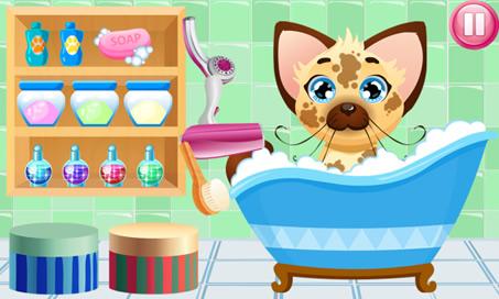Pet Bath - 1