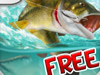 Bass Assassin 2 FREE