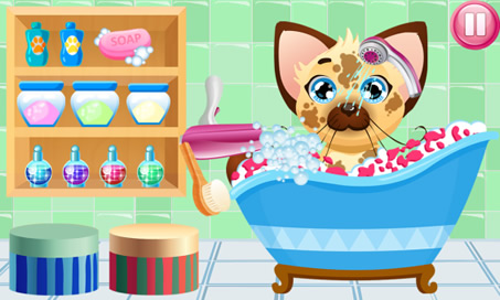 Pet Bath - 3