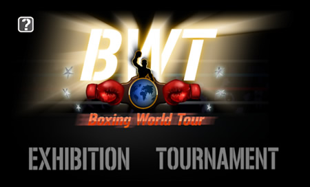Boxing World Tour - 31