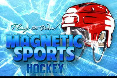 Magnetic Sports Hockey Lite - 1