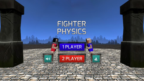 Fighter Physics - 4