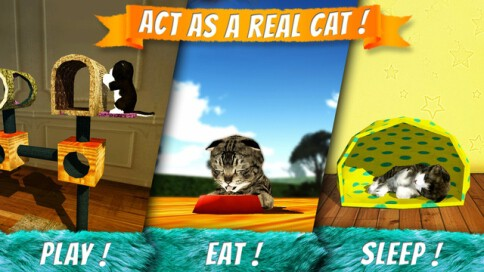 Cat Simulator 2015 - 2