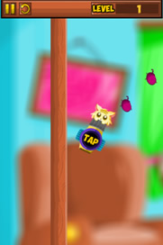 Kitten Bounce - 2