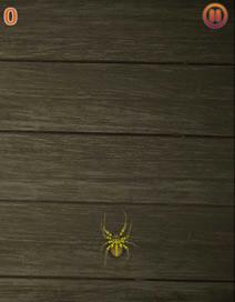 Spider Squish - 1