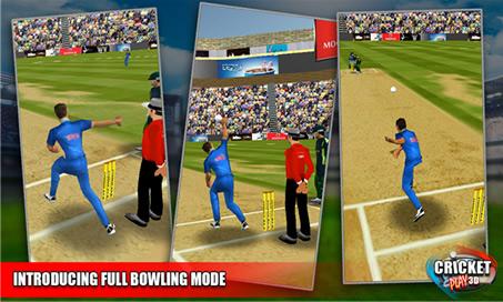Cricket Play 3D - 3