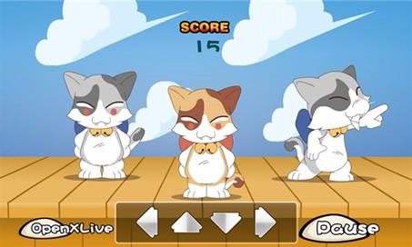 Cat Dance - 2