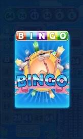 Flamingo Bingo - 1