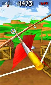 Master Archer 3D - 1