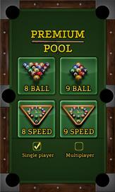 Premium Pool - 4