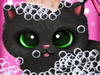 Cute Pet Cat Wash,Bath and Dressup