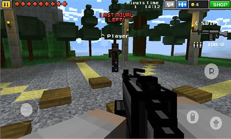 Pixel Gun 3D - 4